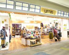 urnis-dainichi-thumb-748xauto-582