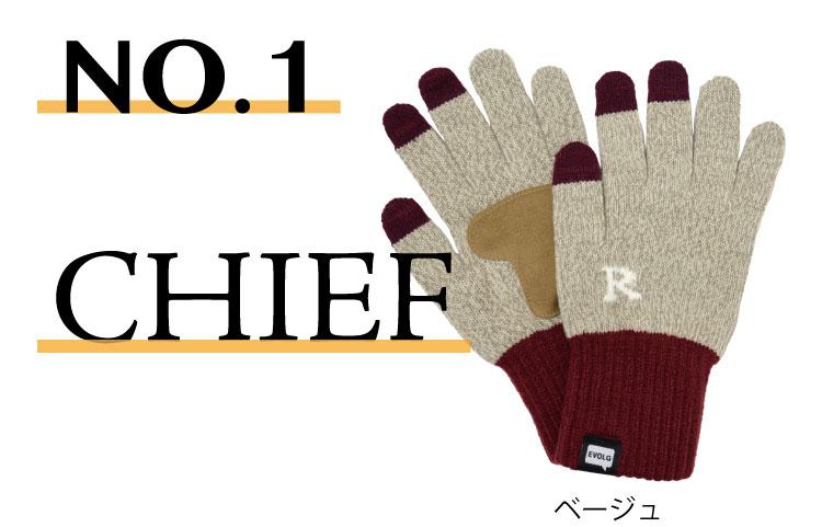 evolg2-1