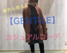 20190118 ブログ迫川_190118_0009