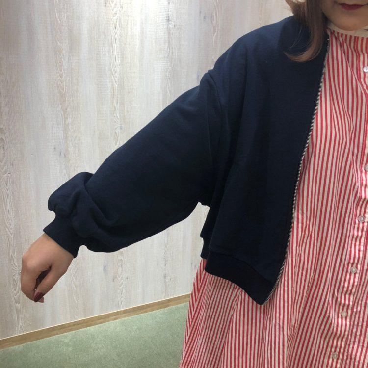 20190307迫川_190306_0006