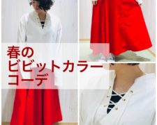 20190313田中ブログ_190311_0015